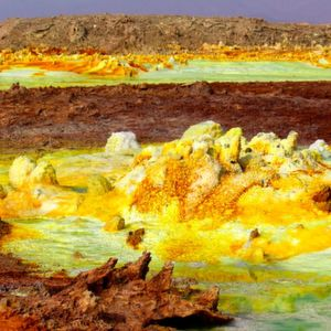 Tiny Microbes Survive Mars-like Environment Conditions