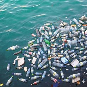 Giftmischendes-Plankton-auf-Mikroplastik