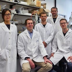 Biotechnologen-entwickeln-Peptid-Wirkstoffe-aus-dem-Baukasten
