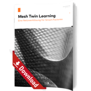 Mesh Twin Learning