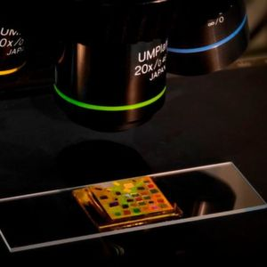 Simple chip powered by quantum dots allows standard microscopes to visualize difficult-to-image biological organisms.