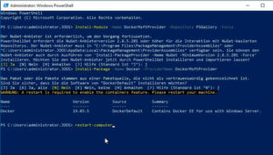 Abbildung 4: Installieren von Docker in Windows Server 2019