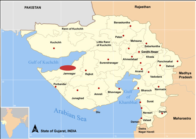 Jamnagar - currrently the location of the world's biggest refinery and a future petrochemical hub.