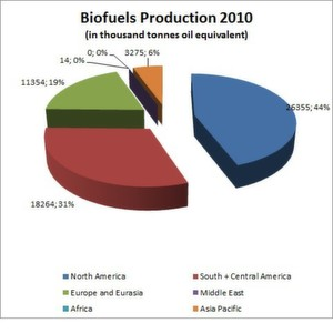 In 2010, the total biofuels production grew by around 13 percent.