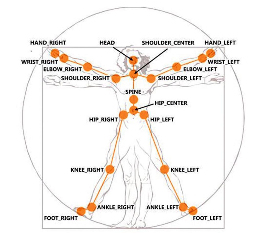 3: Die Skelettstruktur des Menschen zeigt 20 Gelenkpunkte.
