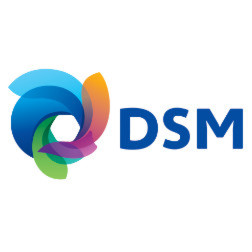 DSM has big plans for polymers in the US