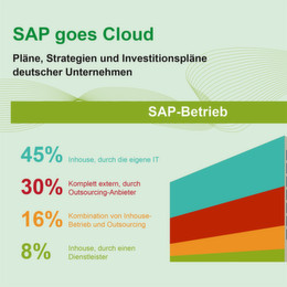 Outsourcing- und Cloud-Strategien im SAP-Umfeld