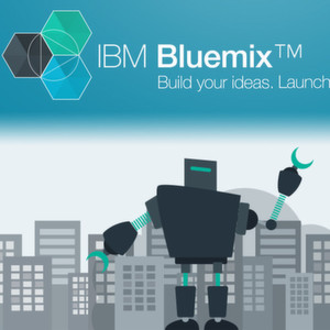 IBM startet Bluemix Single-Tenant-Version