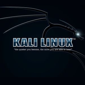 Penetrationstests mit Kali Linux