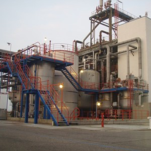 Invista is bringing production of its Terrin polyols to Europe via its facility in Vlissingen, The Netherlands.