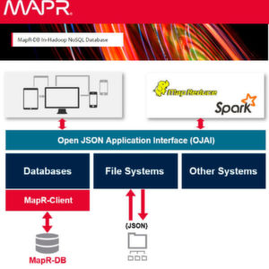 Schema des Open JSON Application Interface-API (OJAI) für JSON-Daten in Hadoop.