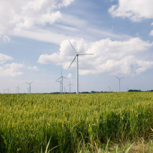 According to forecasts by the International Energy Agency IEA, electricity generation from renewable sources will roughly triple between 2012 and 2040. The problem is that wind and solar are volatile; the amount of energy they deliver fluctuates sharply. To store large amounts of energy from renewable resources, flexible storage systems such as redox flow batteries will be needed in the future.
