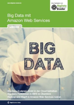 Big Data mit Amazon Web Services
